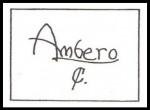 Vase Marked With Ambero